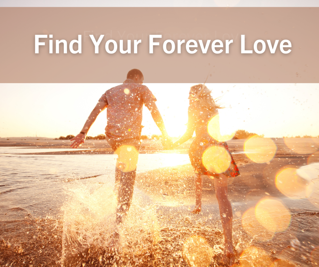Find Your Forever Love